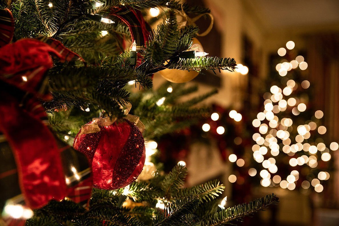 Decorated trees add more charm for Christmas