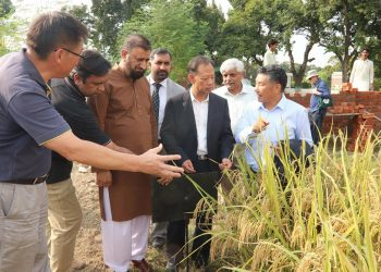 Research center on hybrid rice in Pak-China Universities